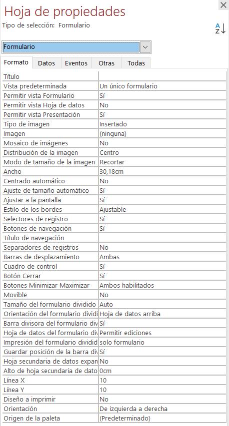 Propiedades de formulario de Access - Formato