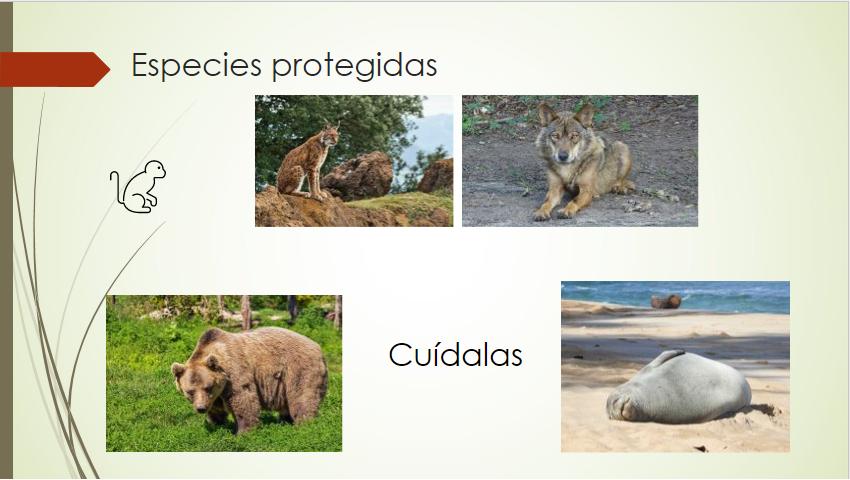 Diapositiva tras aplicar Autocorrección