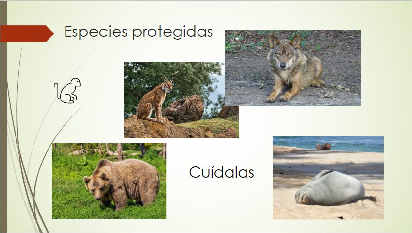 Ejemplos de elementos de diseño para diapositivas de PowerPoint